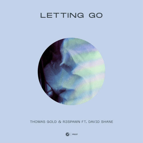 Thomas Gold & R3SPAWN feat. David Shane - Letting Go (Extended Mix) [Protocol Recordings]